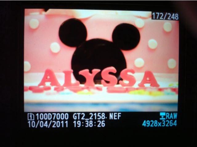 Alyssa 1yr old birthday party (Apr 11))